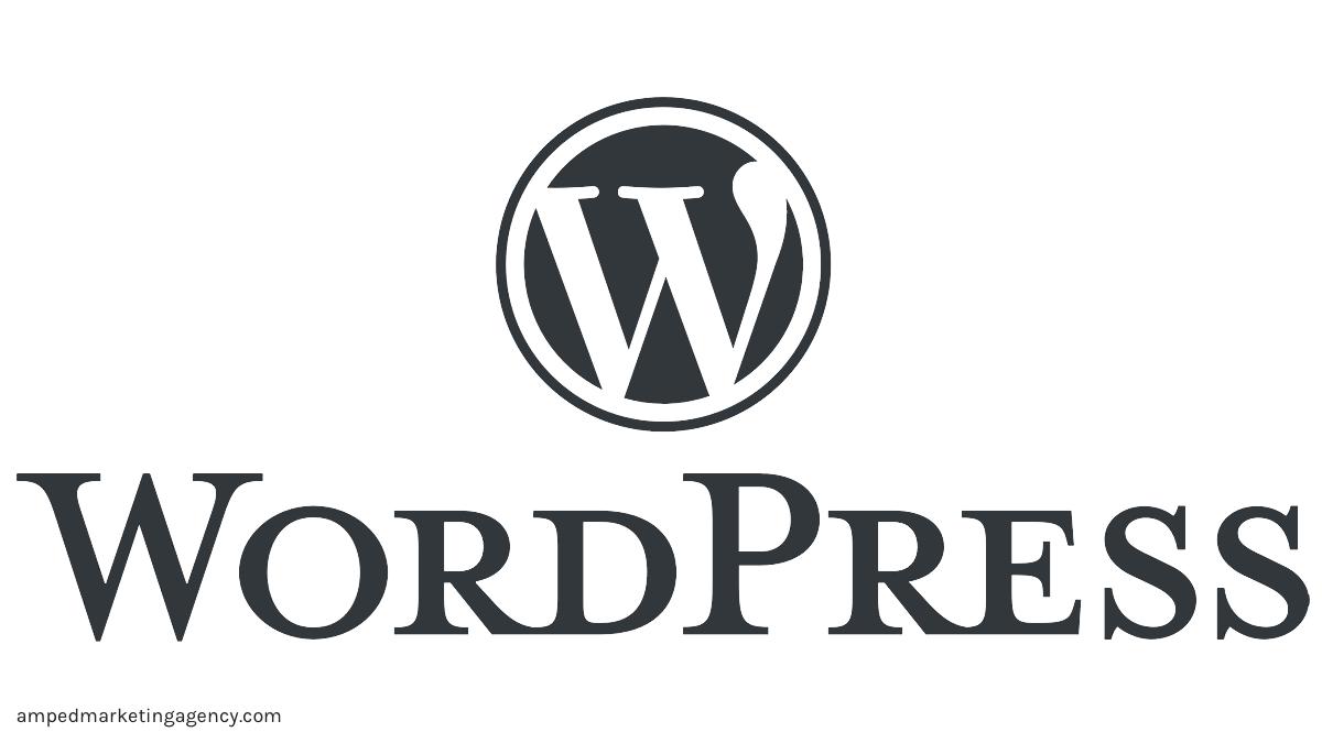 amped marketing agency wordpress website design logo